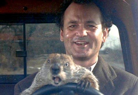 groundhog-day-bill-murray-day.jpg